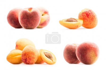 collage with peaches and apricots