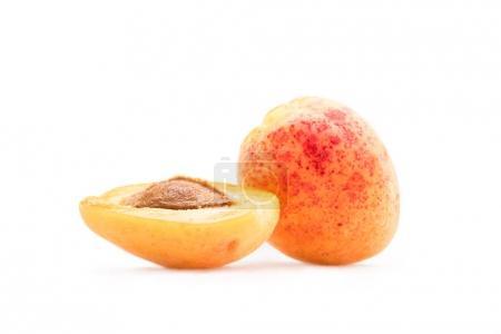 fresh sweet apricots
