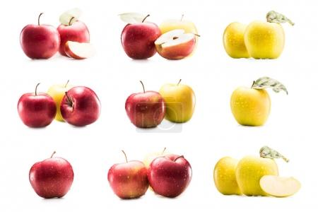 Photo for Collage with various fresh and ripe apples isolated on white - Royalty Free Image