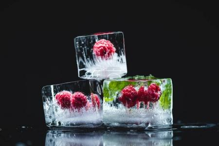 raspberries frozen in ice cubes
