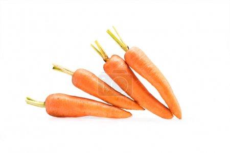 Pile of fresh ripe carrots