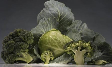 Still-life of cabbage and broccoli