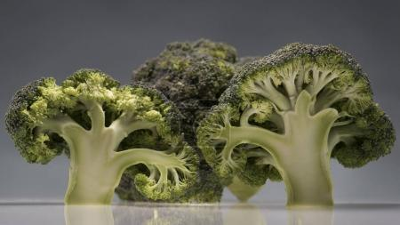 Healthy ripe broccoli branches