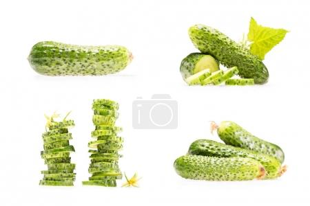 Photo for Collage of various stacks and piles of cucumbers isolated on white - Royalty Free Image