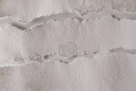 Photo for Blank white ragged paper texture - Royalty Free Image
