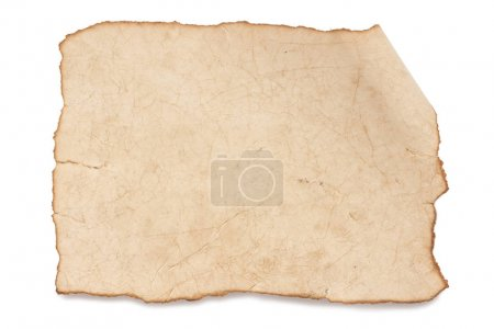 Photo for Blank rustic paper texture isolated on white - Royalty Free Image