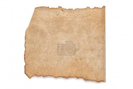 blank brown paper texture
