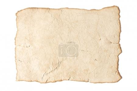 Blank antique paper texture