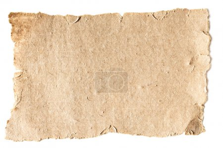 Photo for Blank aged paper texture isolated on white - Royalty Free Image
