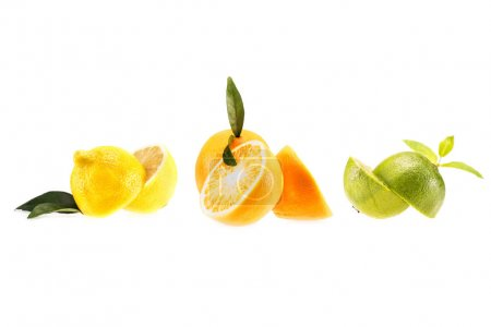 lemon, orange and lime