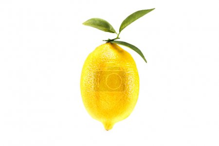 Photo for Yellow juicy lemon with leaves, isolated on white - Royalty Free Image