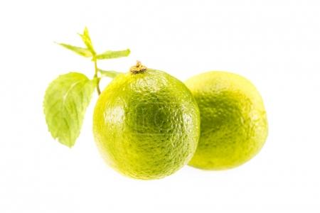 Photo for Fresh whole limes and mint leaves, isolated on white - Royalty Free Image
