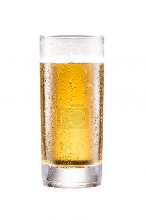 glass of fresh tasty beer