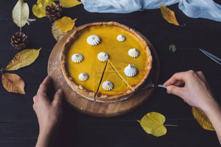 Female hands taking piece of pie
