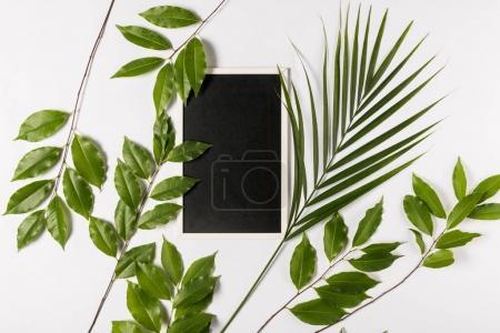 Photo pour Tablette numérique avec écran blanc et feuilles fraîches vertes, isolées sur blanc - image libre de droit