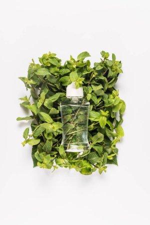 Organic mint oil