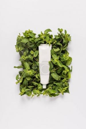 Photo for Tube of organic cream on mint leaves, isolated on white - Royalty Free Image