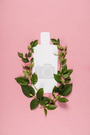 Organic lotion