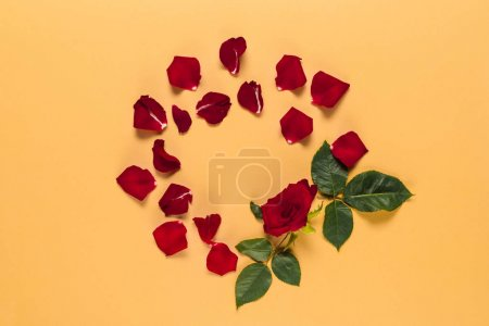 Photo for Petals and red rose with leaves in circle frame, isolated on orange - Royalty Free Image