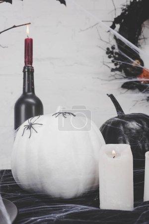 halloween pumpkins with spiders