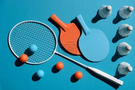 ping pong and badminton equipment