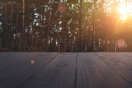 Photo for View of summer forest with wooden surface in the foreground - Royalty Free Image
