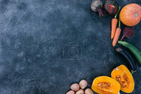 various autumn vegetables