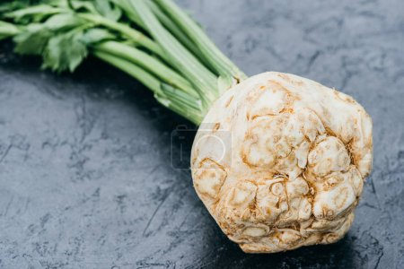 Photo for Close-up view of fresh organic celery with root - Royalty Free Image