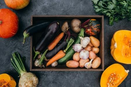 Reifes Gemüse in Schachtel