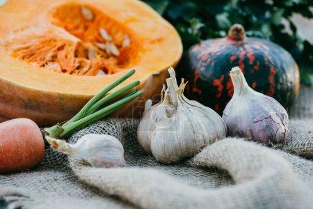 Photo pour Vue rapprochée des légumes mûrs d'automne sur sac - image libre de droit