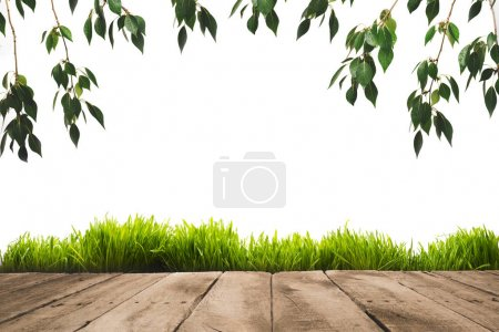 Green leaves, sward and wooden planks