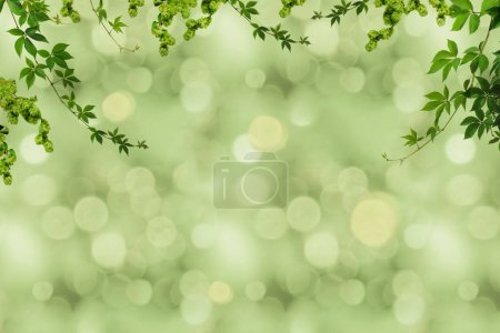 Green foliage and blurry background