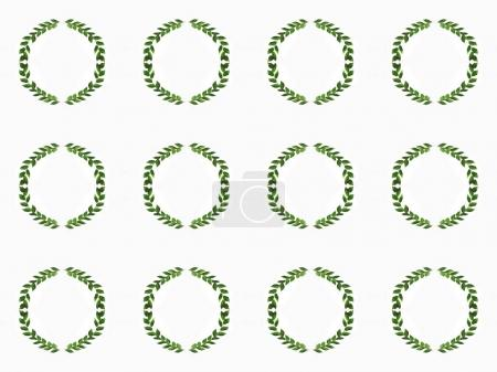 arranged green branches with leaves