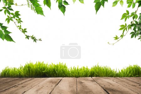 Photo for Green leaves on twigs, sward and wooden planks background - Royalty Free Image