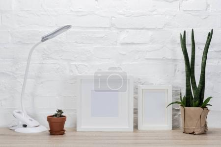 photo frames, plants and table lamp
