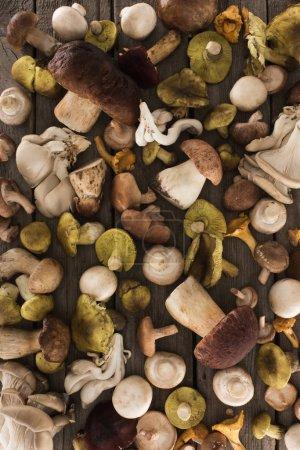 Foto de Vista superior de diferentes tipos de setas en una mesa de madera rayas - Imagen libre de derechos