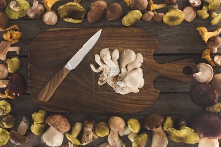 Austernpilze und Messer auf Schneidebrett