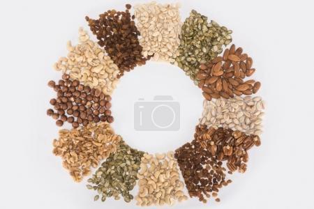 circle made from various nuts