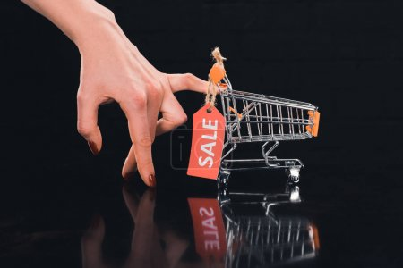 shopping cart with sale tag