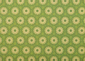set of beige mandalas on light green