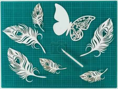 Top view of cut paper butterfly and feathers on turquoise scale
