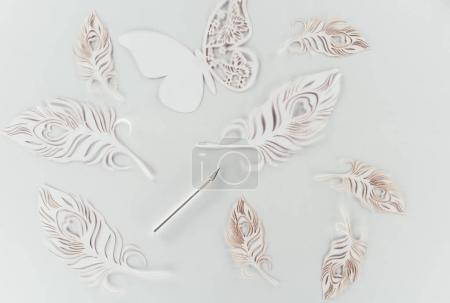 Top view of cut paper butterfly and feathers isolated on white