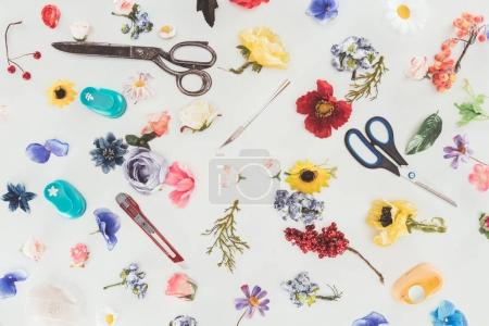 Top view of colored flowers with scissors and stationery knife isolated on white