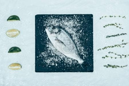 Photo for Top view of fresh raw dorado fish with on slate board and herbs with lime slices on grey - Royalty Free Image