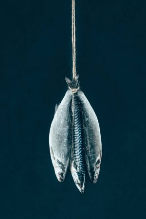 close-up view of uncooked mackerel fish hanging on rope isolated on black