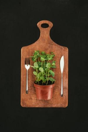 top view of mint in pot and fork with knife on wooden cutting board on black