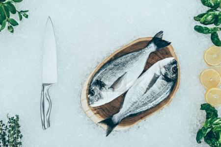top view of raw dorado fish and knife with ingredients on ice