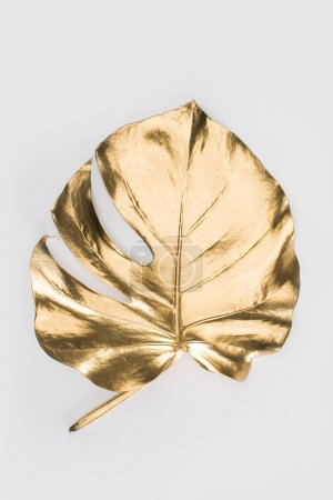 close up view of shiny big golden leaf isolated on grey