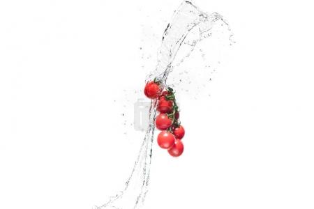 Photo for Fresh cherry tomatoes in water splashes isolated on white - Royalty Free Image