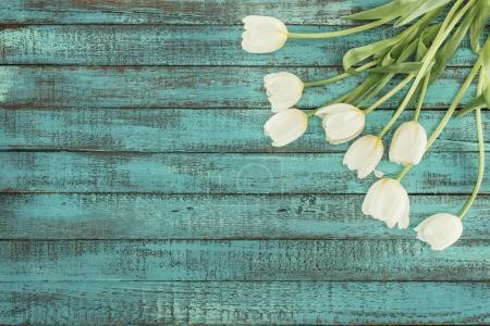 tulipes à fleurs tendres sur fond vert en bois avec espace de copie